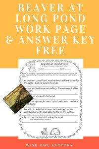Beaver-at-long-pond-work-page-and-answer-key-freebie
