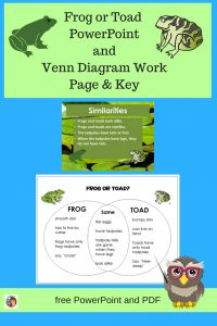 frog-or-toad-venn-diagram-and-answer-key-and-free-PowerPoint