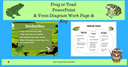 Frog Or Toad Resources