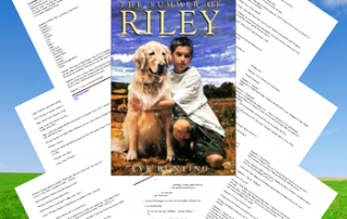 free readers' theater Summer of Riley script