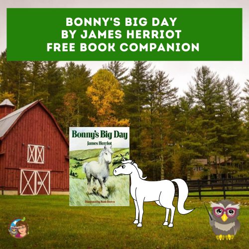 Bonny's Big Day free work pages and answer keys