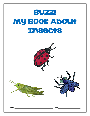 My own insect booklet cover