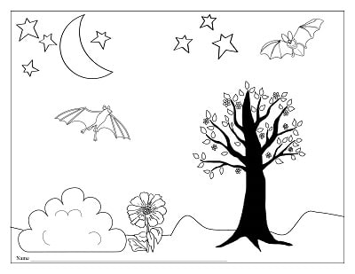 diagram-and-work-page-for-bats-coloring-page
