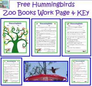 free-hummingbirds-work-page
