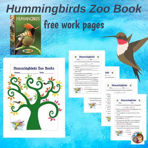 free-hummingbirds-work-page