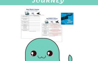 baby-whales-journey-q-and-a-class-chart-free-download