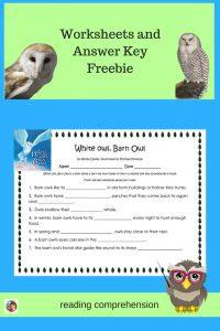 white-owl-barn-owl-reading-comprehension-worksheets-free-PDF