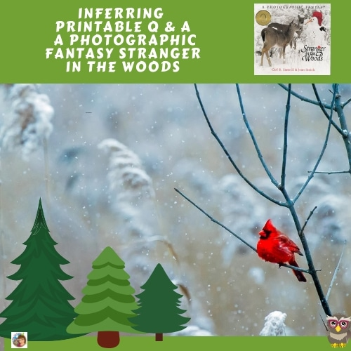 stranger-in-the-woods-inferring-q-and-a-teacher-guide-free