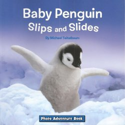 Baby-Penguin-Slips-and-Slides