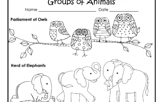 Parliament of owls and a few animal groups free PDF