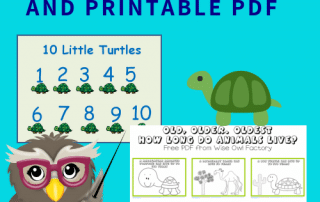10-little-turtles-PowerPoint-and-printable-pages-freebies