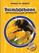 Bumblebees-by-Emily-K-Green-book-cover-photo