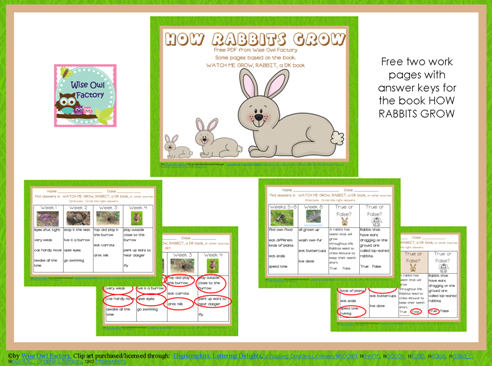 Free Rabbit Facts Nonfiction Printable