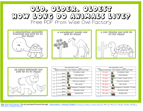 Free Ages of Animals PDF and Count to 10 with Turtles PPt