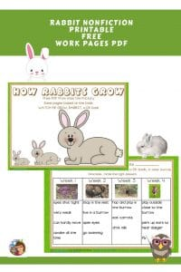 rabbit-work-pages-how-rabbits-grown-nonfiction-freebie