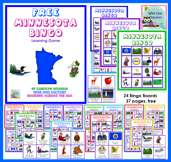 Free Minnesota Educational Bingo Game