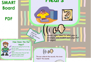 information photo for how we hear lesson