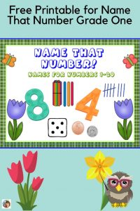 name-that-number-1-20-grade-one-spring-theme-math-free-instant-download