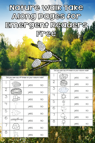 Nature Walk Recording Pages for Emergent Readers, rocks printable, QR codes, sort and name rocks, free