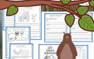 bear-theme-writing-frame-fiction-non-fiction-free-printable-PDF