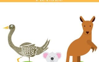 emu-koala-and-kangaroo-writing-frames-freebies