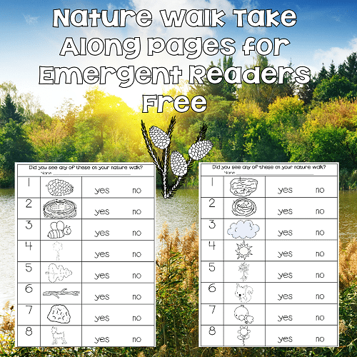 info-photo-for-nature-take-along-pages