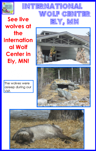 Free Wolf Fiction and Nonfiction Writing Frames