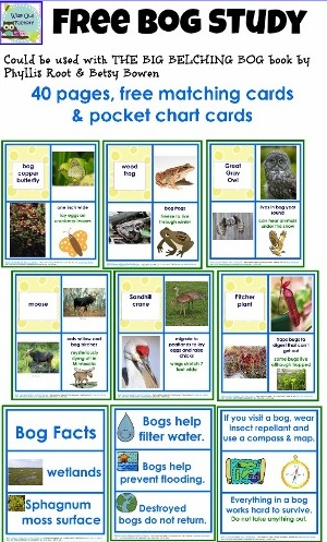 free-bog-matching-cards-animals-and-plants printable