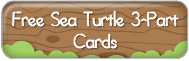 free-sea-turtle-3-part-cards-printable