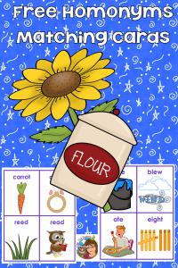 freebie-elem-ed-homonyms-cards-instant-download