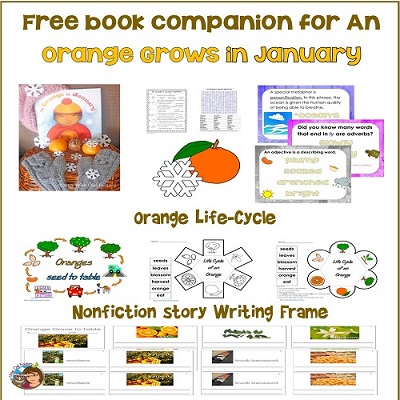 book-companion-for-Orange-in-January-life-cycle-of-orange-word-find-writing-literacy
