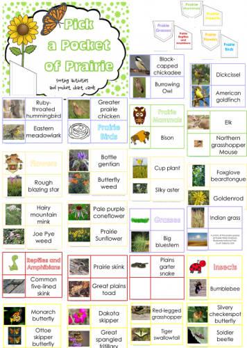 Plant a Pocket of Prairie Free Printable
