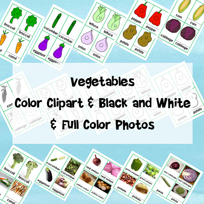 free-veggie-3-part-cards-information1