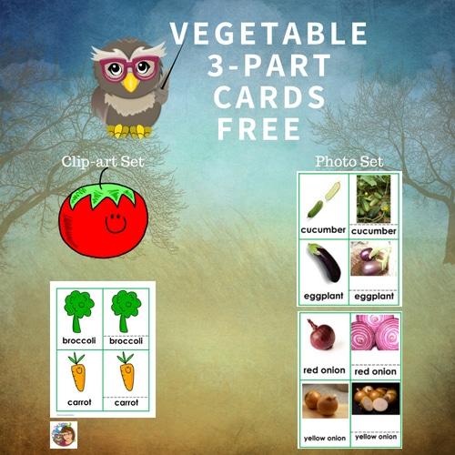 vegetable-3-part-cards-set-Montessori-inspired-free-printable
