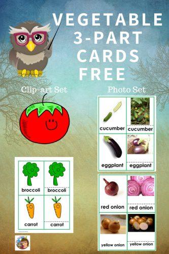 vegetable-3-part-cards-set-Montessori-inspired-freebie