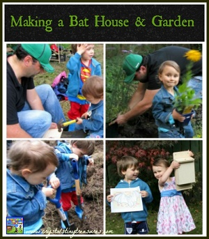 Building a Bat House and Garden