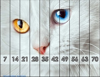 Animal-skip-counting-picture-puzzles