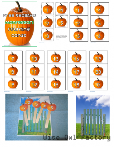 graphic relating to Five Little Pumpkins Printable named Absolutely free Montessori Comfortable Halloween Printables and Do it yourself Actions