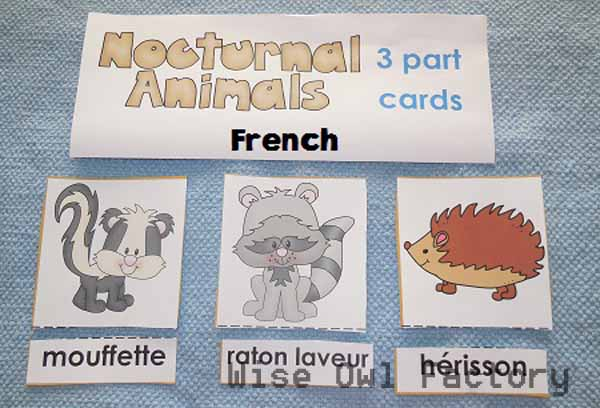 alternate activity French-free-3-part-cards-nocturnal-animals