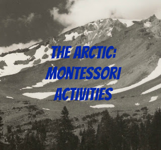 arctica-and-antarctica-montessori