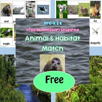 matching-animals-and-habitats-printable-activity-science-freebie