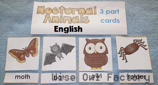 alternate activity nocturnal-animal-in-English-3-part-cards-free