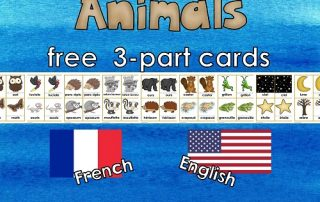 nocturnal-animals-3-part-cards-instant-download