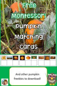 pumpkin-matching-cards-freebies-counting-cards-5-little-pumpkins