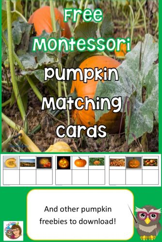 pumpkin-matching-cards-freebies-counting-cards-5-little-pumpkins