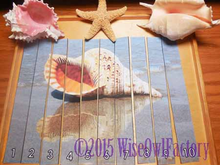 free shell-skip-counting-puzzle-on-wooden-tray