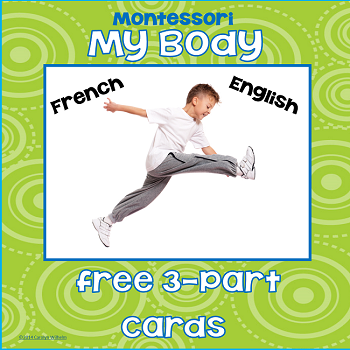 Free Montessori 3-Part Cards My Body in English and in French