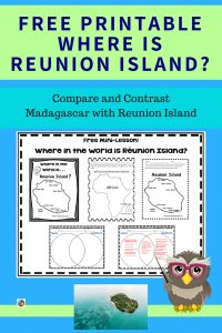 where-is-Reunion-Island-and-compare-with-Madagascar-free-printable-social-studies-maps
