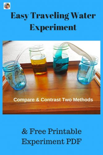 Traveling Water Experiment with free printable and step by step information to replicate this easy to set up science activity. #science