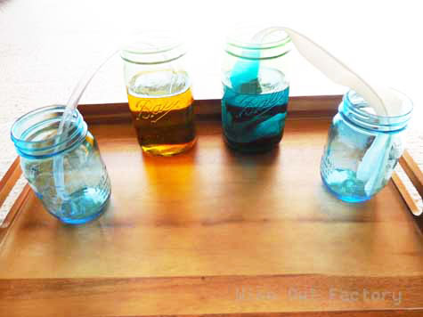 science experiment traveling water set up